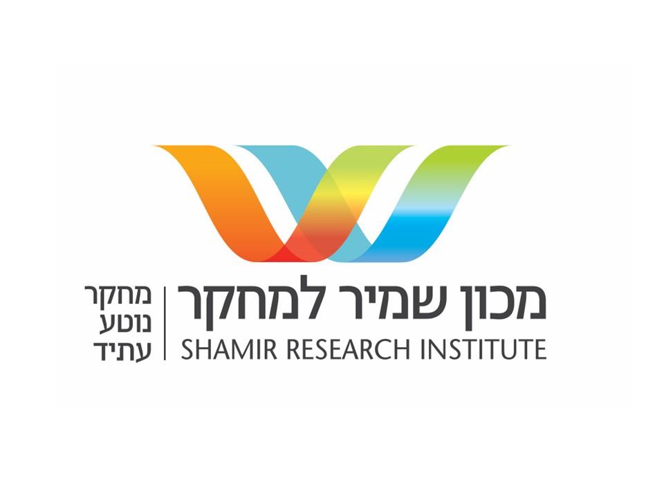 לוגו מכון שמיר - עברית