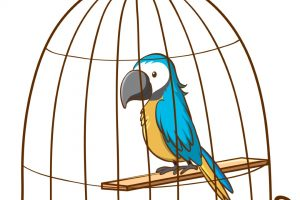 Cute parrot in cage on white background illustration